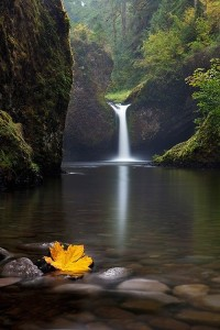 Waterfall - Punch Bowl Falls, Oregon Columbia River Gorge